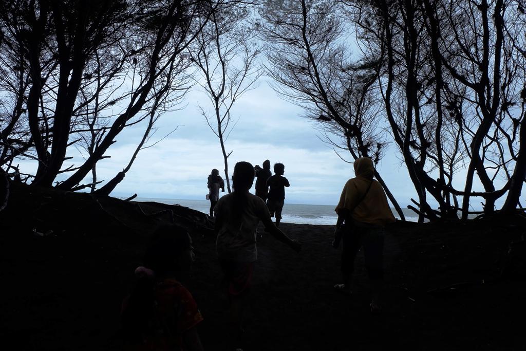 Pantai Cemara, Bantul