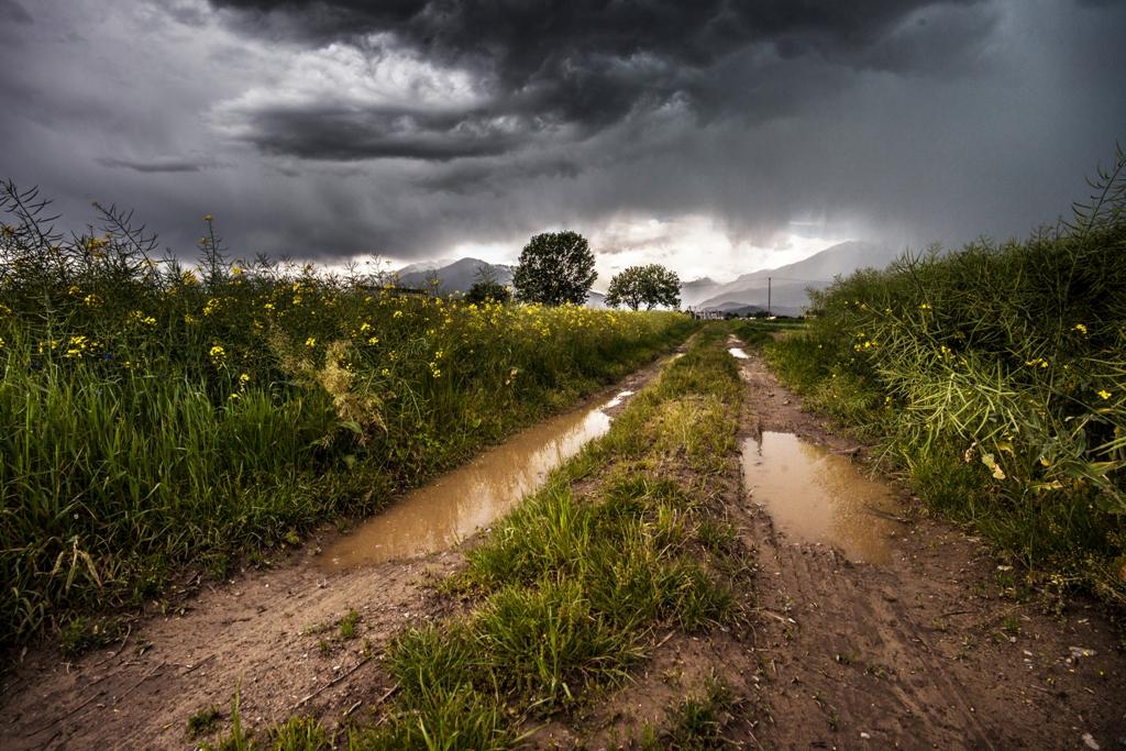 field-thunderstorm-rainy-meadow
