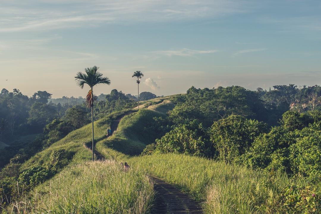 Pergasingan Hill, Ubud